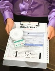 How to Pass a Drug Test ebook by Ian Jones