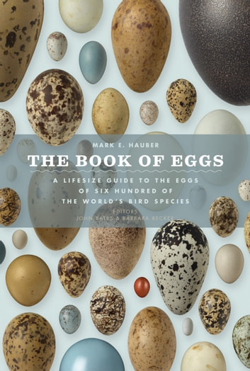 The Book of Eggs - A Life-Size Guide to the Eggs of Six Hundred of the World's Bird Species ebook by Mark E. Hauber