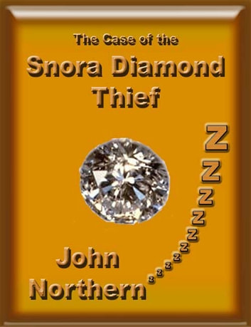 The Case of the Snora Diamond Thief ebook by John Northern