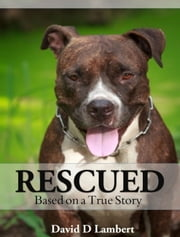 Rescued Based on a True Story ebook by David D Lambert