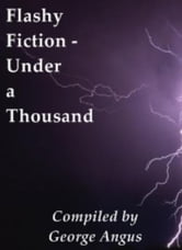 Flashy Fiction: Under A Thousand ebook by George Angus