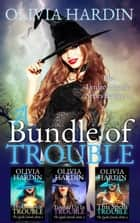 A Bundle of Trouble (The Lynlee Lincoln Series Books 1-3) ebook by Olivia Hardin