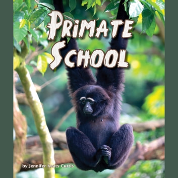 Primate School audiobook by Jennifer Keats Curtis