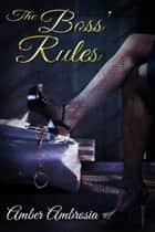 The Boss' Rules ebook by Amber Ambrosia