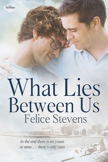 What Lies Between Us ebook by Felice Stevens