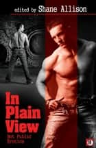 In Plain View: Gay Public Sex ebook by Shane Allison