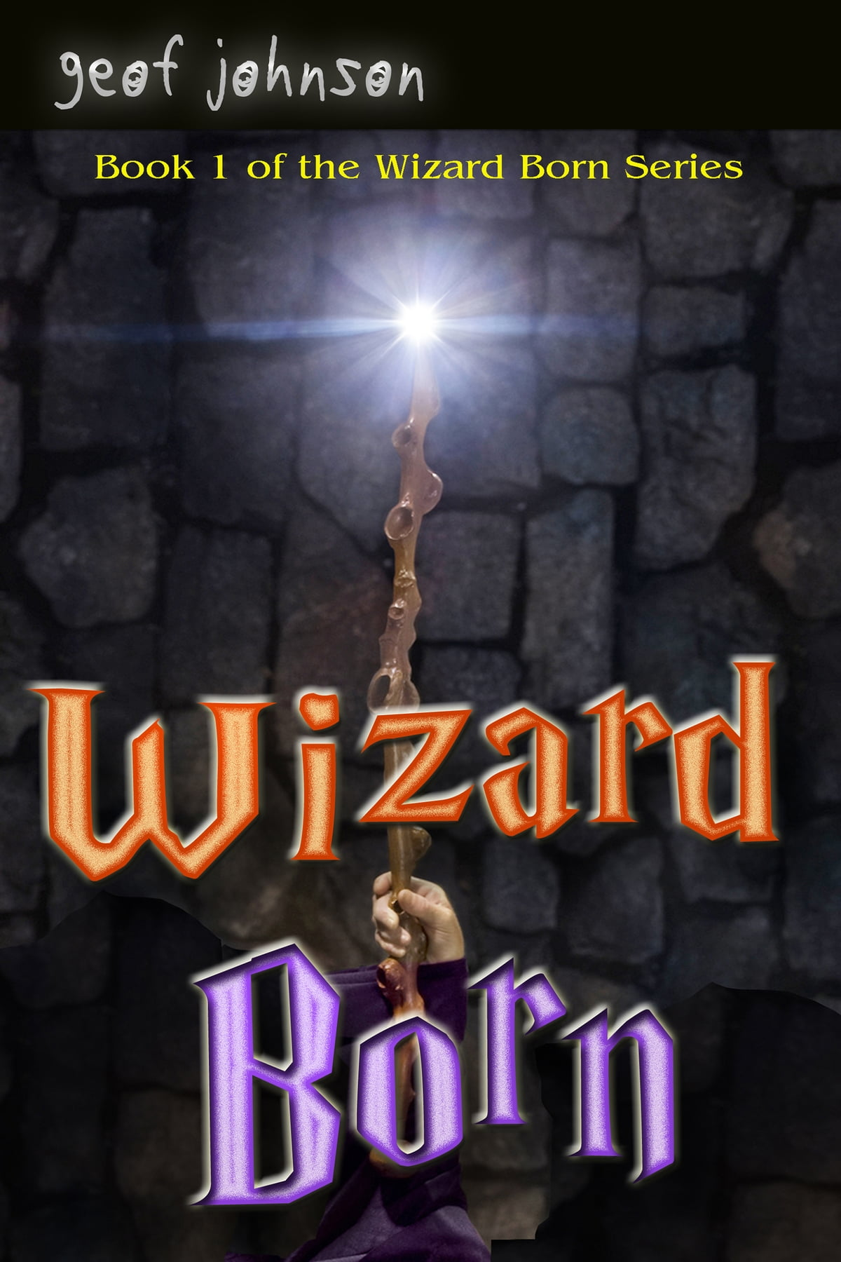 Wizard Born  Book One Of The Wizard Born Series Ebook By Geof Johnson