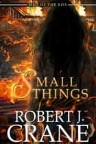 Small Things ebook by Robert J. Crane
