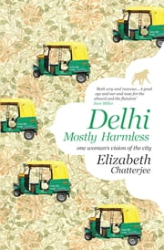 Delhi - Mostly Harmless-One woman's vision of the city ebook by Elizabeth Chatterjee