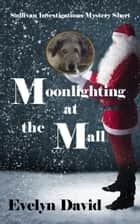 Moonlighting at the Mall ebook by Evelyn David