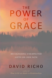 The Power of Grace - Recognizing Unexpected Gifts on Our Path ebook by David Richo