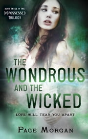 The Wondrous and the Wicked ebook by Page Morgan