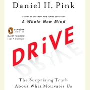 Drive - The Surprising Truth About What Motivates Us audiobook by Daniel H. Pink