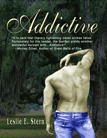 ADDICTIVE ebook by Leslie Stern