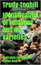 Identification of Feldspar and Its Varieties - Australian Gemstones Series Book 5 ebook by Trudy Toohill