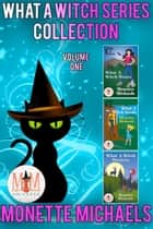 What A Witch Series Collection: Magic and Mayhem Universe ebook by Monette Michaels