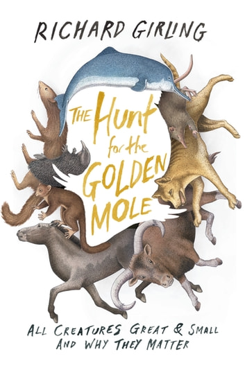 The Hunt for the Golden Mole - All Creatures Great & Small and Why They Matter ebook by Richard Girling