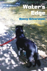 Water's Edge ebook by Barry Silverstein