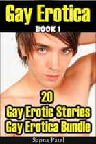 Gay Erotica: 20 Gay Erotic Stories Gay Erotica Bundle, Book 1 ebook by Sapna Patel