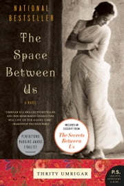 The Space Between Us - A Novel ebook by Thrity Umrigar