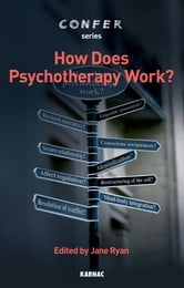 How Does Psychotherapy Work? ebook by