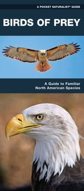 Birds of Prey - A Folding Pocket Guide to Familiar North American Species ebook by James Kavanagh