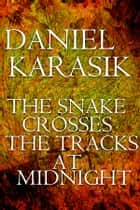 The Snake Crosses the Tracks at Midnight ebook by Daniel Karasik