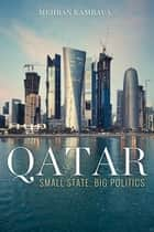 Qatar - Small State, Big Politics ebook by Mehran Kamrava