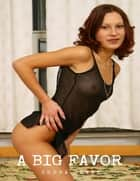 A Big Favor ebook by Sheba Blake
