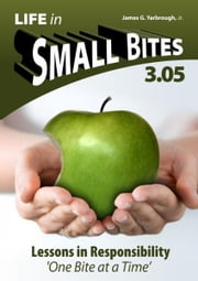 Life in Small Bites: 3.05 Responsibility ebook by James Yarbrough Jr