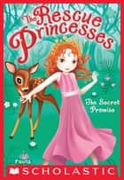 The Rescue Princesses #1: Secret Promise ebook by Paula Harrison