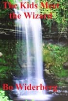 The Kids Meet the Wizard ebook by Bo Widerberg