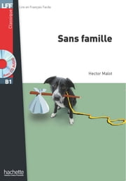 LFF B1 - Sans famille (ebook) ebook by Hector Malot