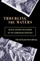 Troubling the Waters ebook by Cheryl Lynn Greenberg