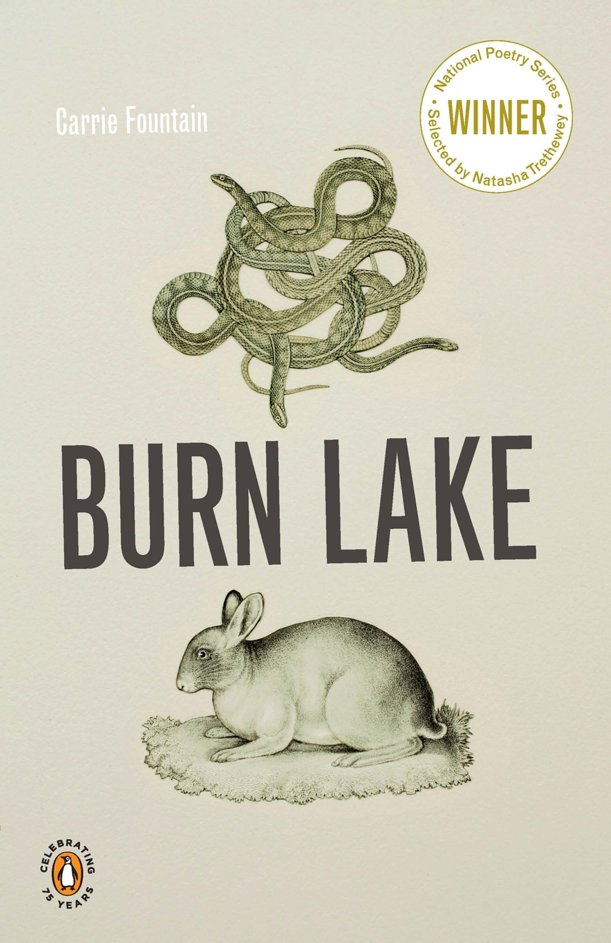 Burn lake ebook by carrie fountain 9781101429587 rakuten kobo fandeluxe PDF