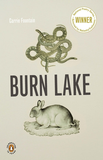 Burn Lake ebook by Carrie Fountain