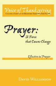 Prayer: A Force that Causes Change - Effective in Prayer: Volume 4 ebook by David Williamson