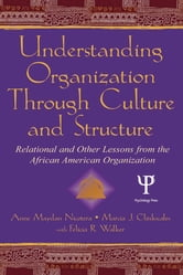 Understanding Organization Through Culture and Structure - Relational and Other Lessons From the African American Organization ebook by Anne Maydan Nicotera,Marcia J. Clinkscales,Felicia R. Walker
