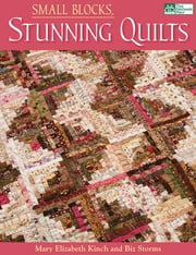 Small Blocks, Stunning Quilts ebook by Mary Elizabeth Kinch,Biz Storms