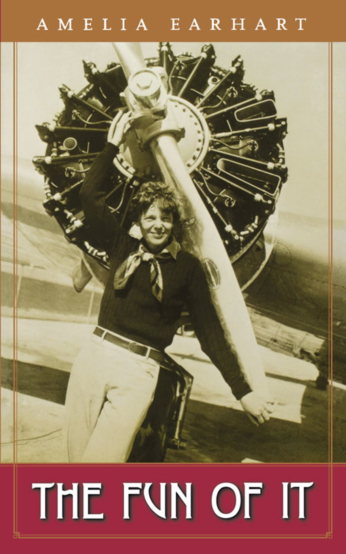 amelia earhart the turbulent life of an american icon winters kathleen c