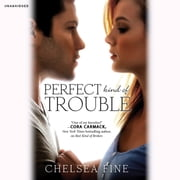 Perfect Kind of Trouble audiobook by Chelsea Fine