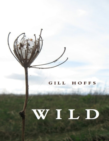 Wild a Collection ebook by Gill Hoffs