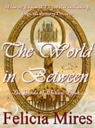 The World in Between ebook by Felicia Mires
