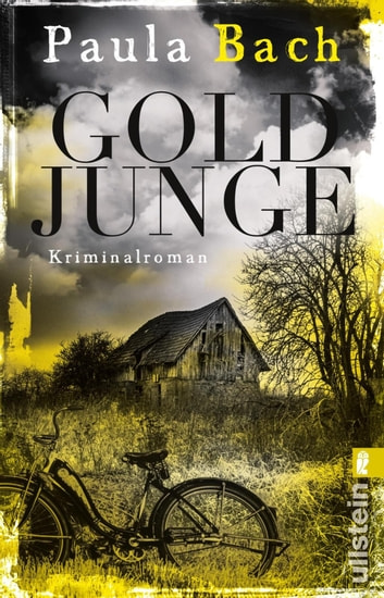 Goldjunge - Kriminalroman ebook by Paula Bach