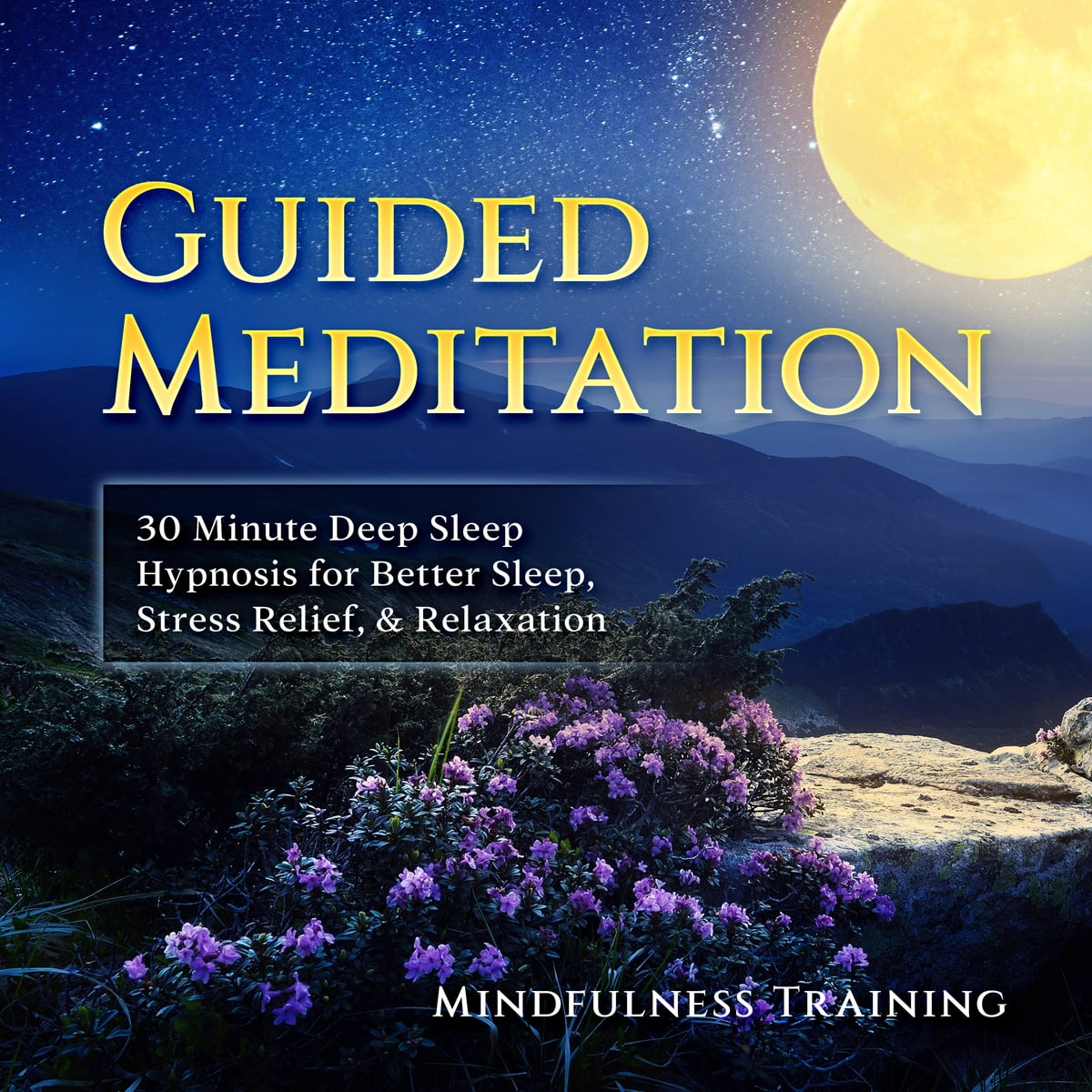 Guided Meditation: 30 Minute Deep Sleep Hypnosis for Better Sleep, Stress  Relief, & Relaxation (Self Hypnosis, Affirmations, Guided Imagery &