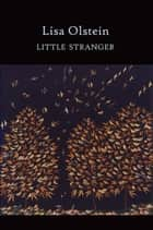 Little Stranger ebook by Lisa Olstein