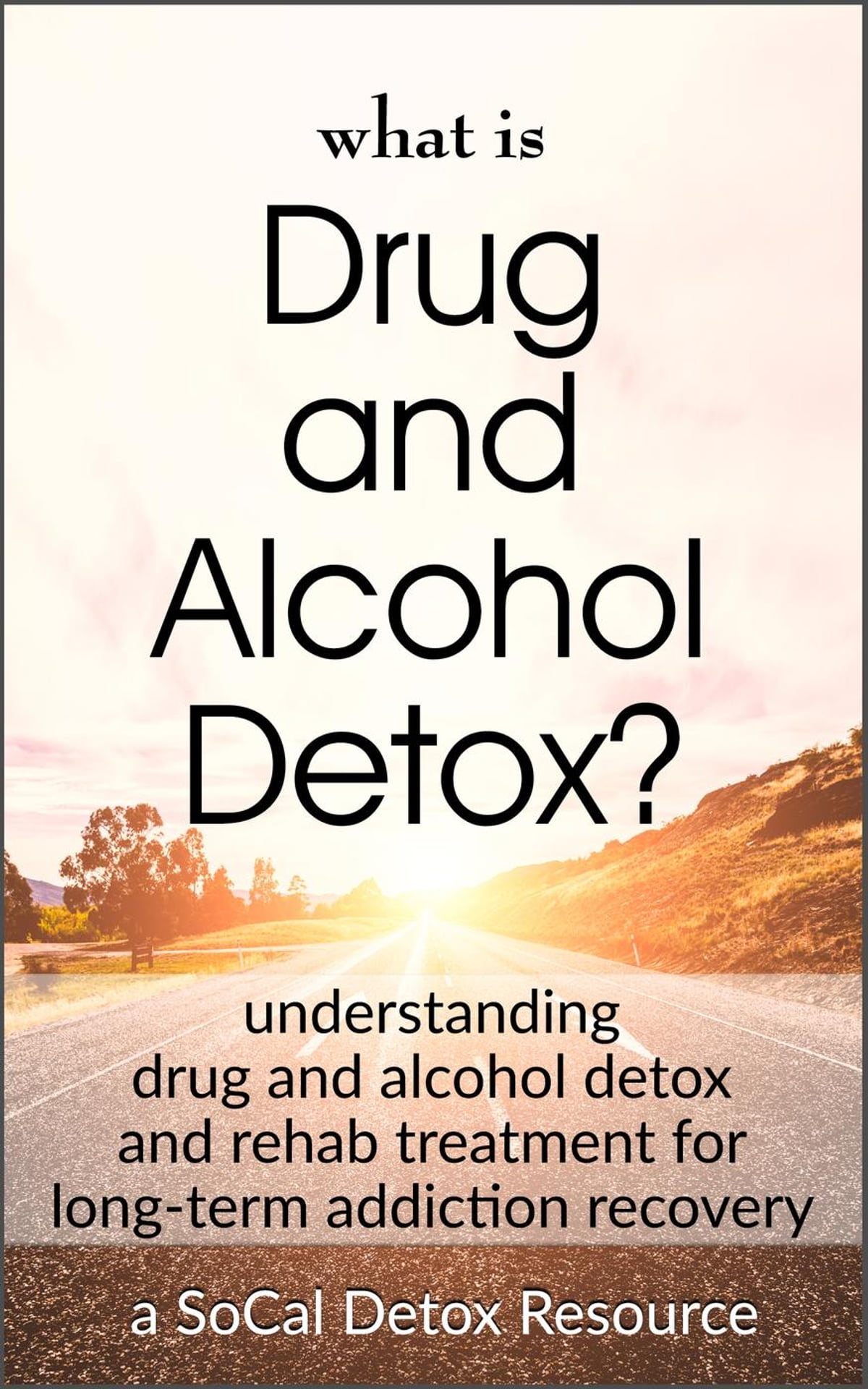 What Is Drug and Alcohol Detox? eBook by SoCal Detox | Rakuten Kobo