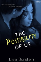 The Possibility of Us ebook by Lisa Burstein