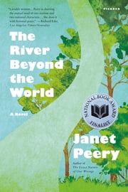 The River Beyond the World - A Novel ebook by Janet Peery