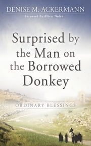 Surprised by the man on the borrowed donkey: Ordinary Blessings ebook by Denise Ackermann